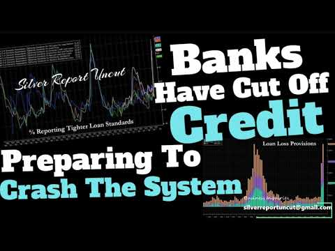 Banks Cut Off Credit & Prepare for Loan Losses as Demand Collapses, Auto Loan Demand Hits Record Low! - Great Video