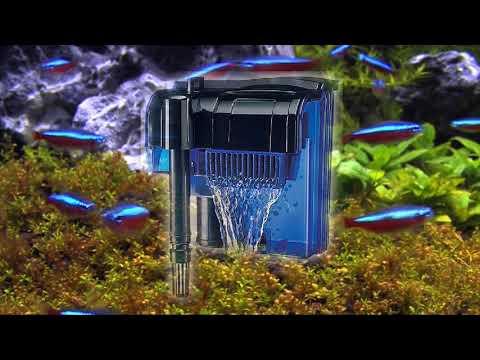 Tipos de Filtros para acuarios (Resubido)