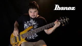 Angra Morning Star Bass - Cover / Ebrahim Muniz