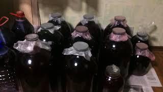 Приготовление вина в домашних условиях. Лучший рецепт Виноделия. The best winemaker