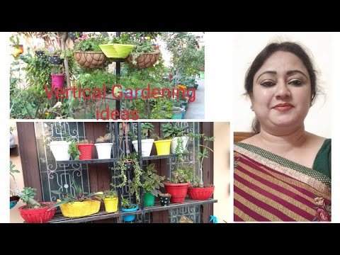 Vertical🏞 Gardening🤓 Ideas //Home Decor Ideas // Garden Management ideas