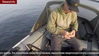 В финском заливе запрещено ловить