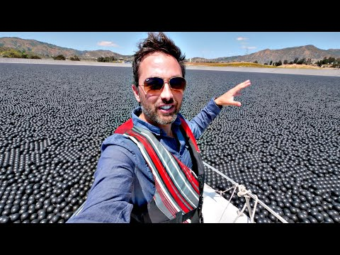 What are 96,000,000 Shade Balls Doing on a LA Lake?