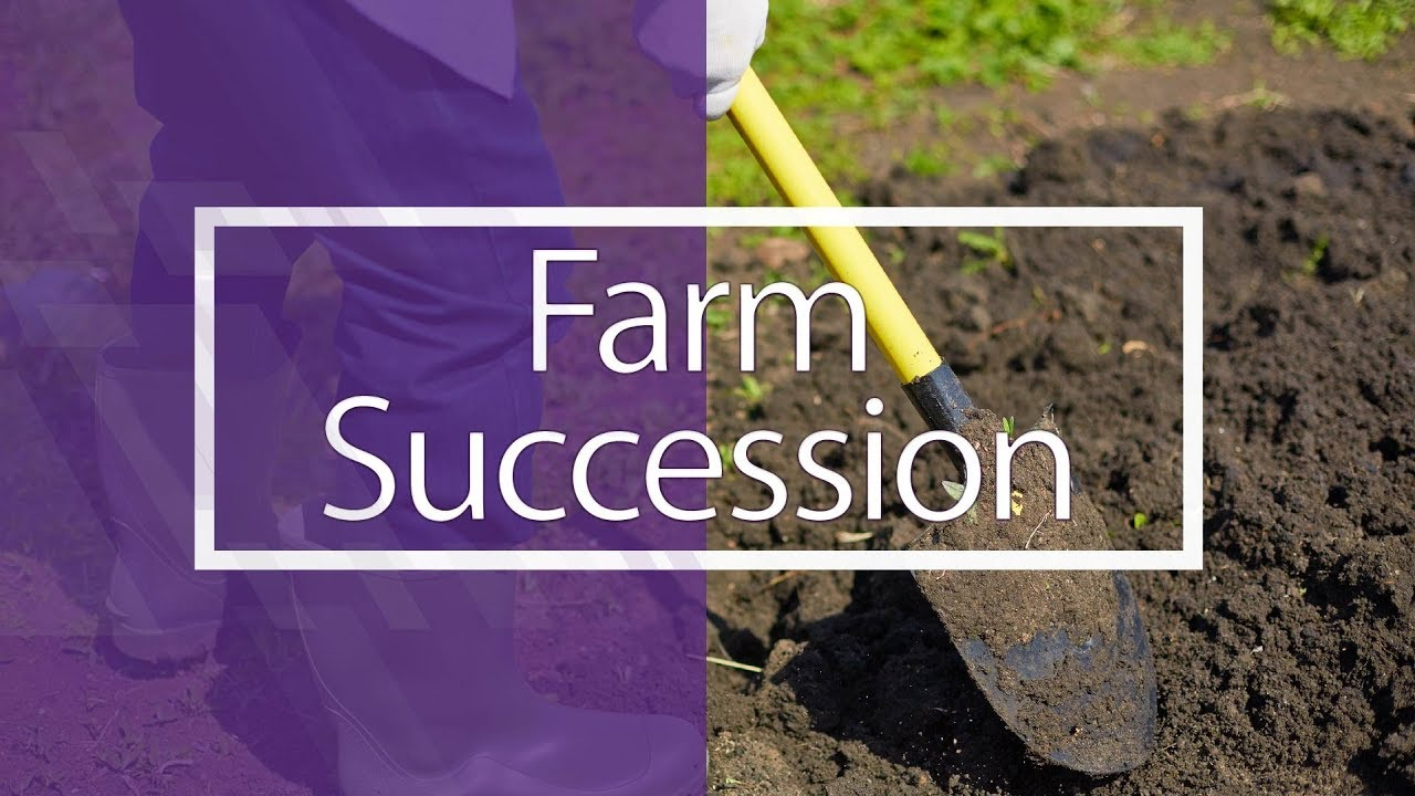 Farm Succession