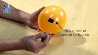 Learn How to Poke a Balloon Without Bursting It! Kids Science Experiments