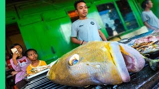 Extreme HALAL Food in Makassar, Indonesia!!! (do they really eat that?)