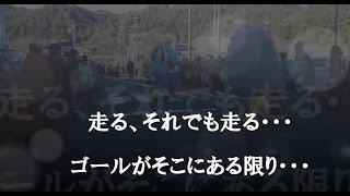 大波乱のゆるキャラマラソン!!(※縦揺れ注意※)