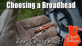5 TIPS for Choosing a BROADHEAD for Your CROSSBOW!