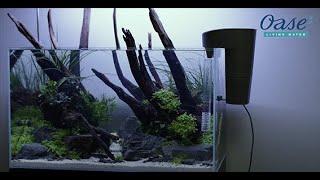 Nowość: kaskady OASE BioStyle