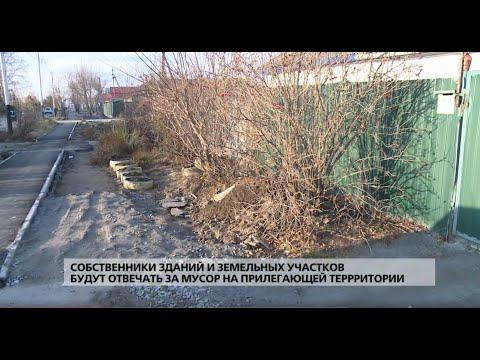 Собственники зданий и земельных участков ответят за мусор на прилегающей территории