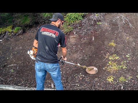 , title : 'Never Pull Weeds Again!  Weed Whacker Trick - RSWAL Ep. 54