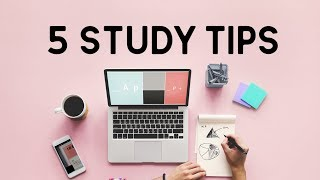 Essential Study Tips for the new year || back to school series