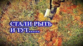 НАХОДКА В СТАРОМ ОВРАГЕ У СТАРОГО ПРУДА!