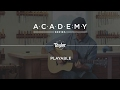Academy Series - Acoustic Guitars - Playable