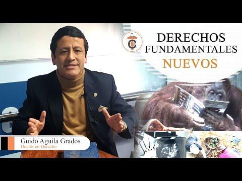 DERECHOS FUNDAMENTALES NUEVOS - TC179