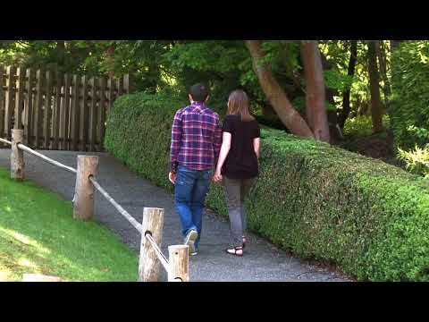 Couple Holding Hands -HD