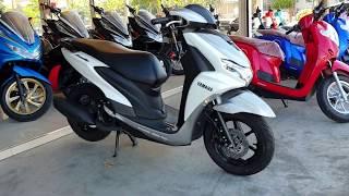New 2019 Yamaha FreeGo 125
