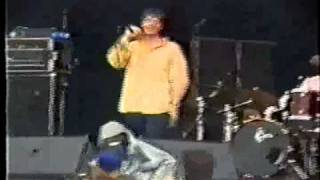 The Charlatans UK - Jesus Hairdo - Live At Phoenix Festival 16.07.1995