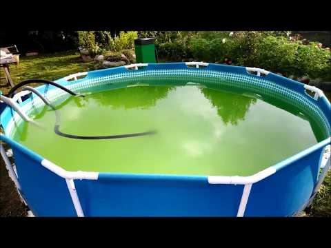 Как очистить бассейн от зелени