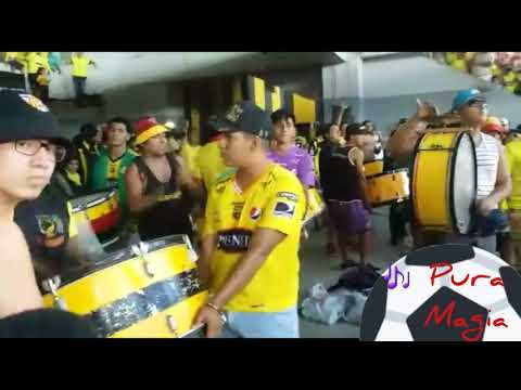"""Pura Magia 🎶 Está Hinchada Ya Te Lo Demostró"" Barra: Sur Oscura • Club: Barcelona Sporting Club"