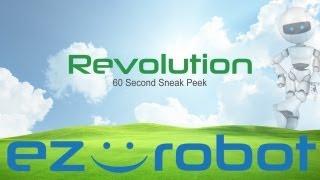 Release 2013.06.04 - Revolution Beta
