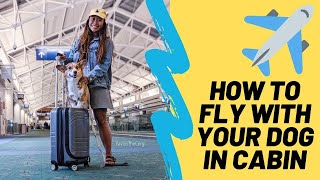 HOW TO FLY WITH YOUR DOG IN AN AIRPLANE CABIN | EMOTIONAL SUPPORT ANIMAL PROCESS *HARNESS GIVEAWAY *