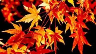 OUTONO - Djavan (letra E Vídeo).flv