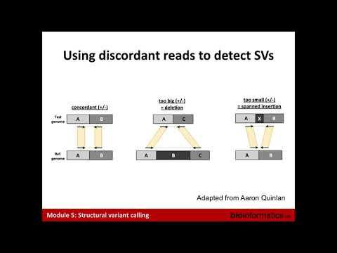 Video Cum de a câștiga pe opțiuni binare