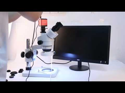 Cousins Microscope Camera Set Up (M60687)