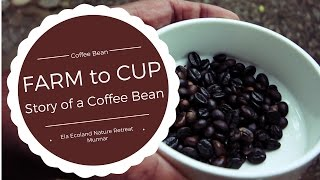 We have some coffee available for you – Blog update