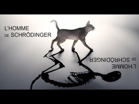 Bande-annonce de L'Homme de Schrödinger de Samuel Sené à l'Artistic Théâtre