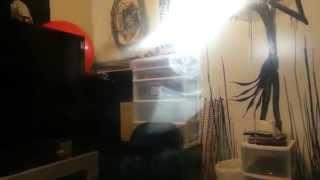 ghost spirit plasma fog video sun light