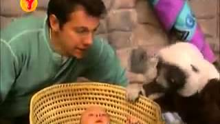Zaboo Mafoo Bölüm 03 izle