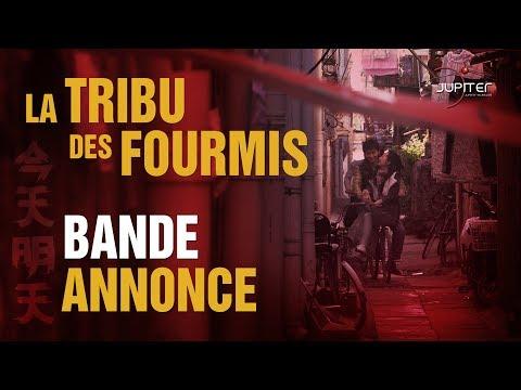 La Tribu Des Fourmis // Bande Annonce Officielle (HD) - VOSTF
