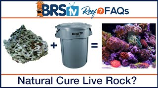 Natural curing live rock for saltwater fish tanks? - BRStv Reef FAQs