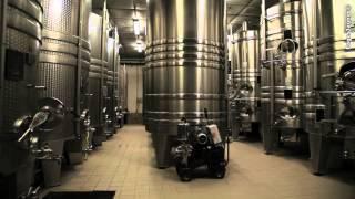 Champagne Rémy Massin et Fils - VILLE SUR ARCE