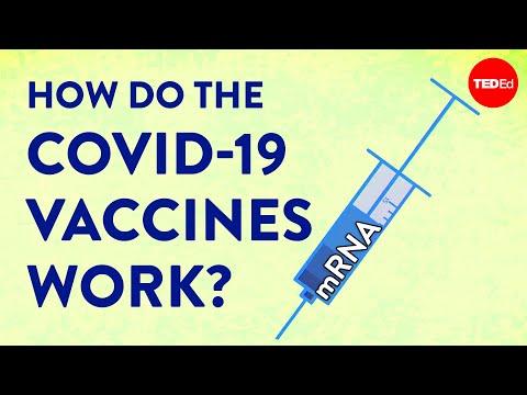 הסבר מרתק: איך חיסוני הקורונה יוצרו כל כך מהר?