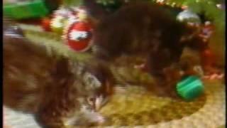 """Bangor Savings Bank """"Christmas Kittens"""""""