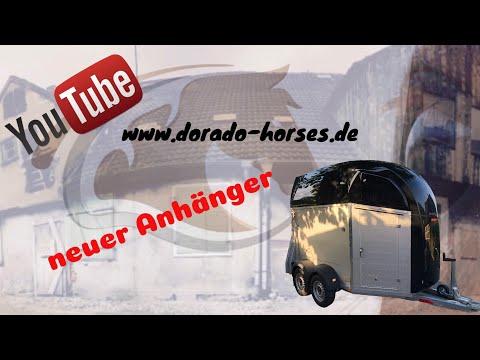 Dorado Horses / unser neuer Anhänger, Abschied alter / kleiner Einblick