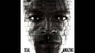 Seal - Amazing (Thin White Duke remix)