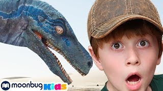 Dinosaurs & Jurassic World | Jurassic Tv | Dinosaurs and Toys | T Rex Family Fun