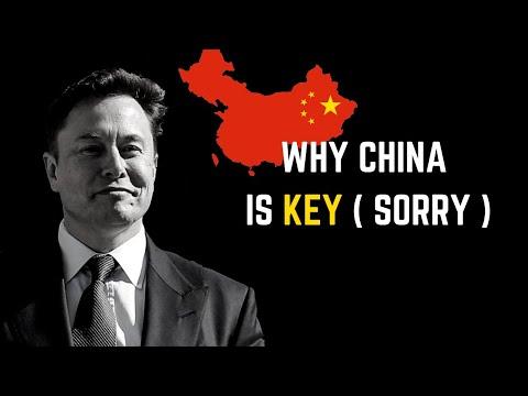 Tesla China Factory will make Billions | Weekly Tesla Stock Analysis