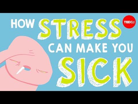 כיצד מצבי לחץ ומתח משפיעים על הגוף שלנו?