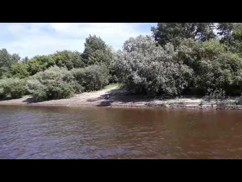 Тюмень 2019. Река Тура. Прогулка на Адмирале
