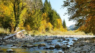 "Native American Flute Music ""The Legend of the Flute"" Relaxing Music, Meditation Music, Sleep Music"
