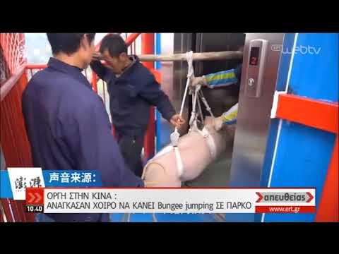 Κίνα | Ανάγκασαν γουρουνάκι να κάνει Bungee Jumping | 21/01/2020 | ΕΡΤ