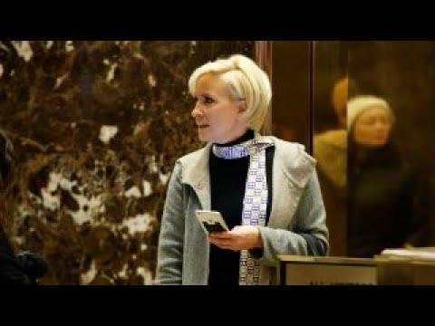 Trump tweets on Mika Brzezinski were 'fantastic,' says Anne Coulter