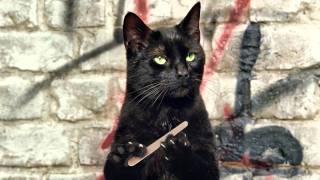 Что было бы ,если бы у кошек был большой палец?