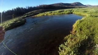 Fly-Fishing Utah's Big Sky River