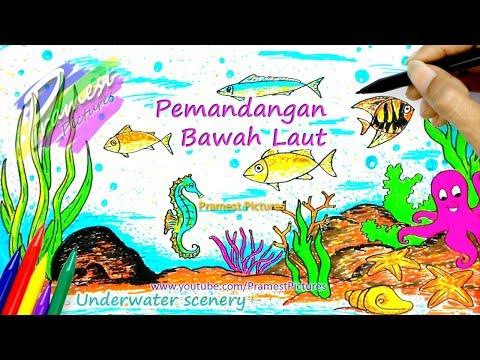 Cara Menggambar Pemandangan Bawah Laut Mewarnai Untuk Anak Anak